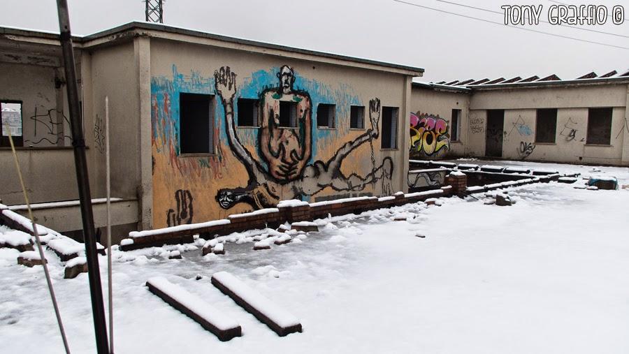 Canemorto Neve