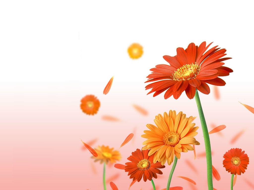 20+ Ide Background Kartu Nama Bunga, Background Bunga