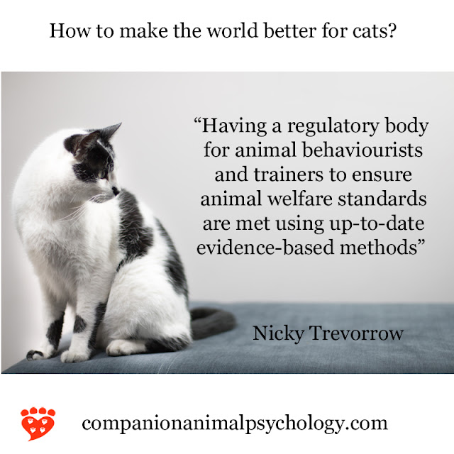 A better world for cats - part of Companion Animal Psychology News