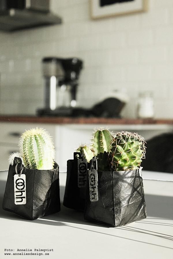 Oohh, kruka, krukor, kaktus, kaktusar, minikaktus, minikaktusar, unik design och interiör, dansk design, danska, danskt, vattentäta krukor, vattentätt, annelies design, inredning, webbutik, webbutiker, webshop,
