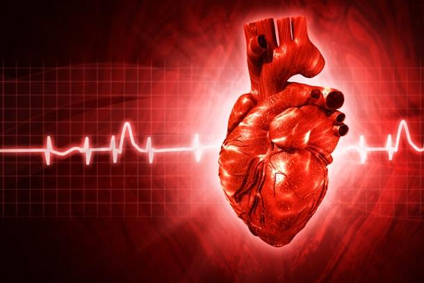 andariki-ayurvedam-heart