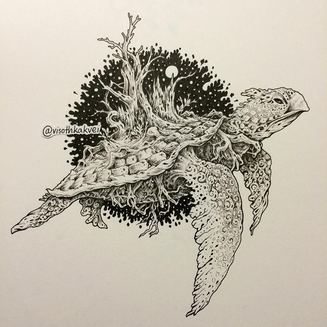 06-Midnight-Story-Turtle-Visoth-Kakvei-Color-and-Black-and-White-Dynamic-Doodles-www-designstack-co