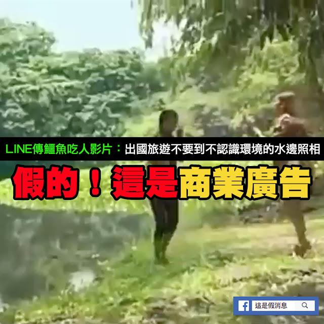 鱷魚 吃人 影片 謠言 假的