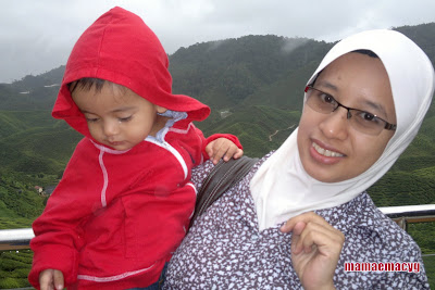 Cameron Highlands Holiday
