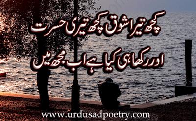 Kuch Tera Shauq Kuch Teri Husrat