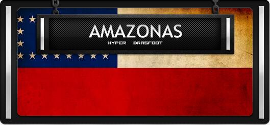 Brasfoot 2018 Patch Amazonas, campeonato amazonense de futebol atualizado, equipes da Amazonas, norte brasfoot 2018, registrado, grátis