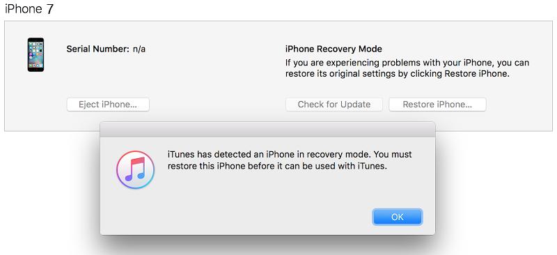 Enter iPhone 7 in DFU mode