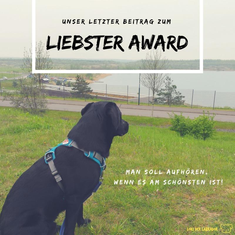 Liebster Award letzter Beitrag