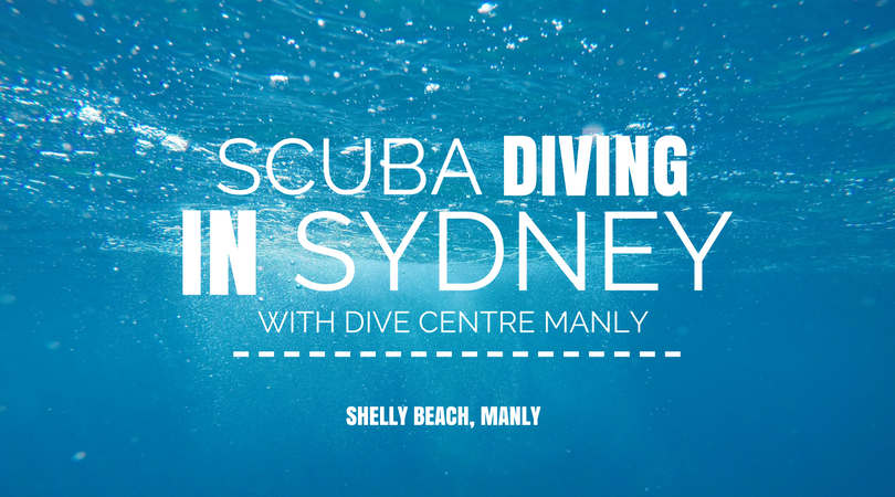 Ever wondered what's life like underwater? Come and find out about my two shore dives in Shelly Beach, Sydney with Dive Shop Manly!