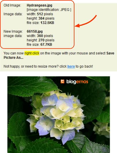 Mengubah Ukuran Foto secara Online di Situs Resize