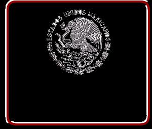 Soluciones al Comercio Exterior: El Agente Aduanal