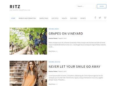 Ritz WordPress Theme