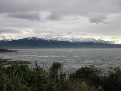 Kaikoura, en Nueva Zelanda