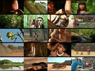 Tears of the Amazon / Слезы Амазонки.
