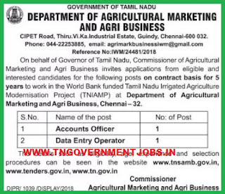tnsamb-tn-agri-marketing-department-data-entry-operator-and-accounts-officer-posts-recruitment-notification-www-tngovernmentjobs-in