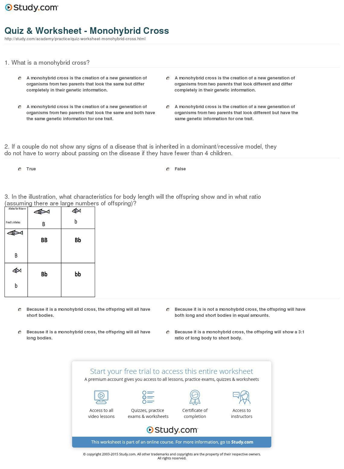 monohybrid cross worksheet - Images for monohybrid cross worksheet