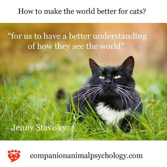 Dr. Jenny Stavisky on how cats see the world