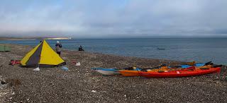 Expedicon en Kayak de Mar en Patagonia. Vida Marina, entre Ballenas, Lobos Marinos y Pinguinos