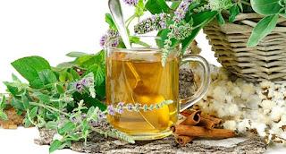 Ritual Purificacion con plantas magicas