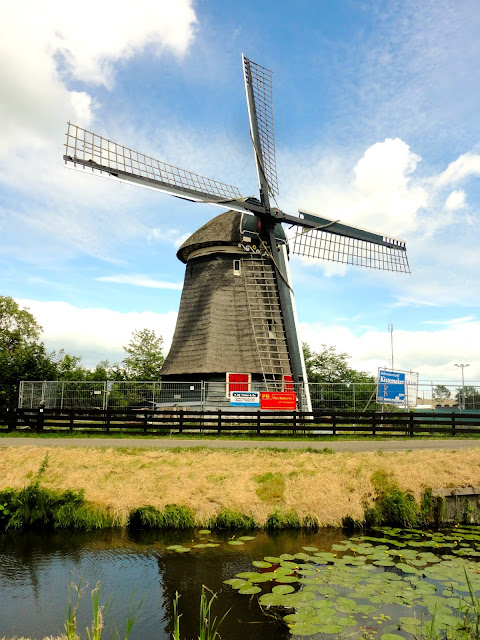Windmill in the Dutch countryside around Edam | Netherlands, Europe