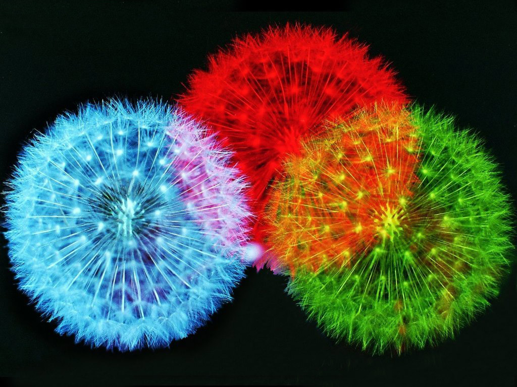 Fireworks Wallpaper Free: Ire Works Wallpaper