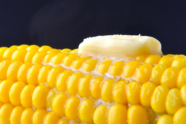 How to cook corn on the cob video guide teroes it looks like you may be having problems playing this video if so please try restarting your browser close how to cook corn ccuart Choice Image