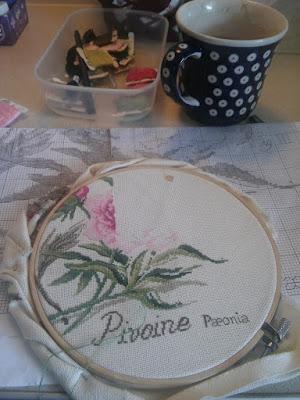 Peonie DFEA – cz. III