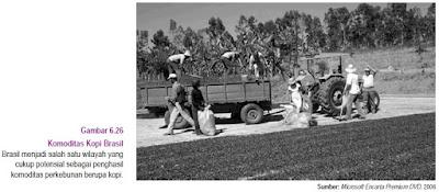 Saat ini Brasil sedang berupaya mengubah arah pembangunan negaranya dari negara pertanian Perekonomian Negara Brazil
