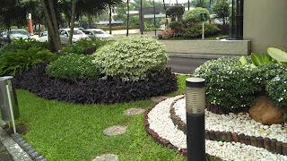 Kami menerima pembuatan taman dan menjual berbagai macam tanaman hias .