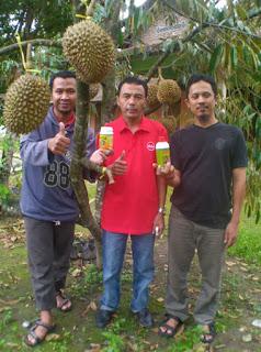 pupuk organik penyubur tanaman durian,cara memupuk durian, dosis pupuk durian, jenis pupuk durian, pupuk penyubur durian, obat penyubur durian, pupuk penyubur tanaman durian, pupuk durian, pupuk penyubur durian,