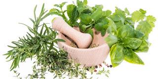 Obat Gatal Pada Dada Ataupun Payudara | Obat Herbal Alami Tanpa efek Samping