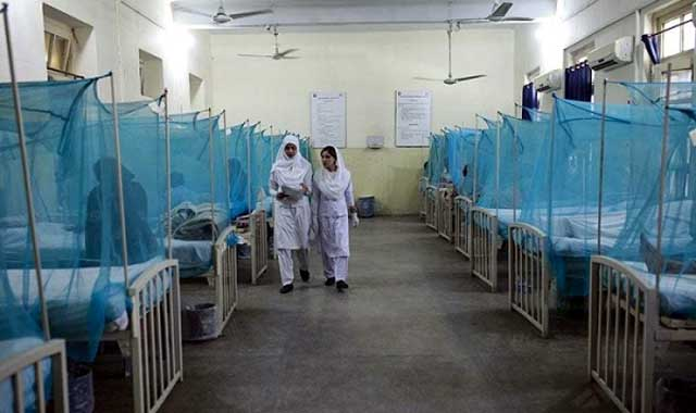 Dengue fever has returned to 28,12 patients recovering