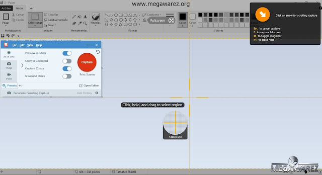 TechSmith Snagit 13 imagenes