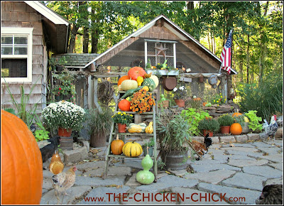 up  the best Gardening and Chicken books