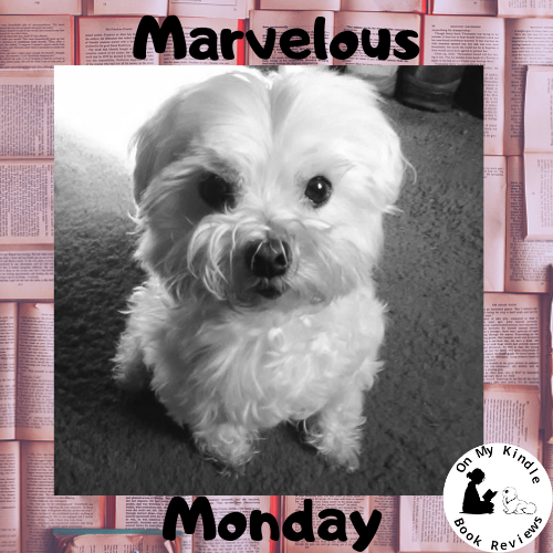 Marvelous Monday with Lexi, Jan 21st, at On My Kindle BR!