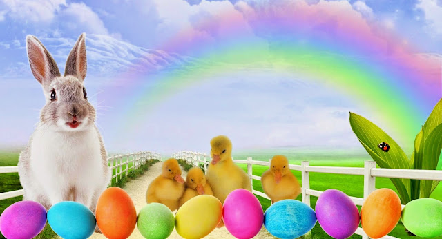 Easter-Cute-Bunny-Images-HD