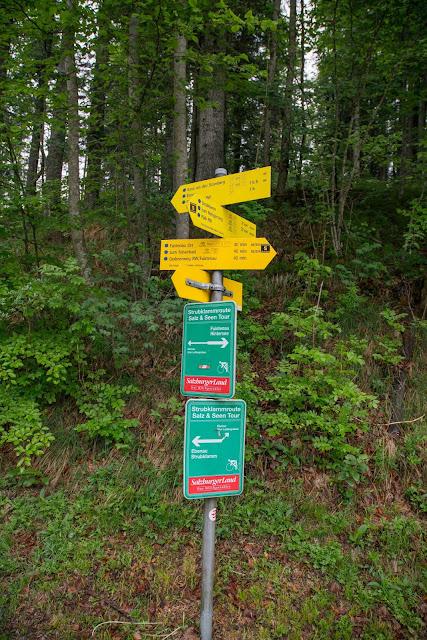 Strumbergspitze und Metzgersteig Wanderung Faistenau – Ebenau  Wandern FuschlseeRegion 02