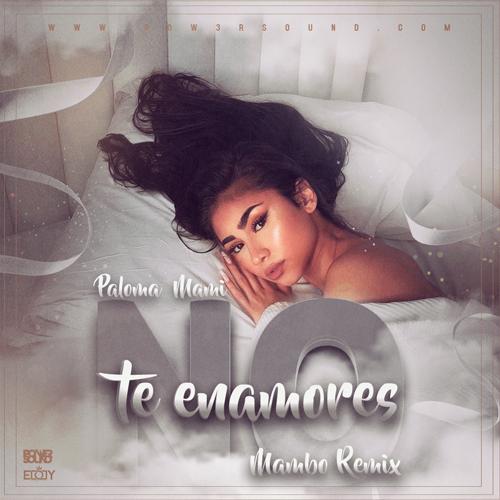 https://www.pow3rsound.com/2019/04/paloma-mami-no-te-enamores-mambo-remix.html