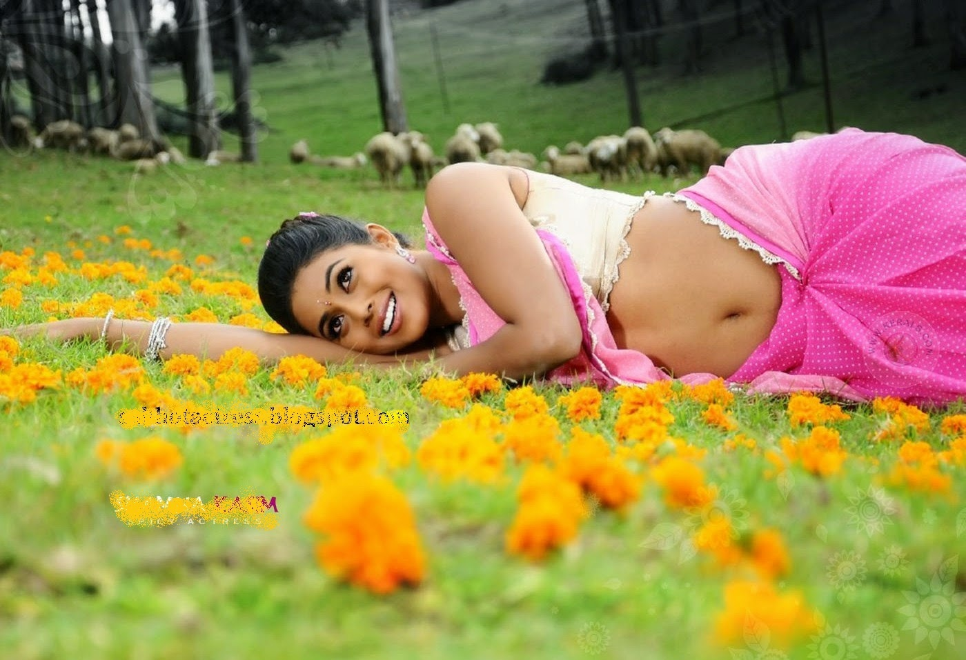 Actress Shamna Kasim Hot Stills