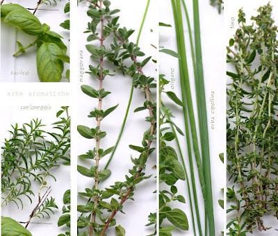 basilico-santoreggia-maggiorana-erba cipollina e timo