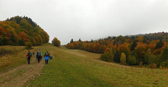 Na przełęcz oddzielającą Kýčerę od Wysokiej.