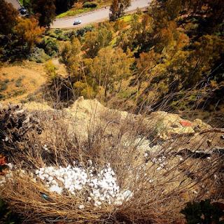 """Veneno en un hotel de Arcos de la Frontera,  en Andalucía, España para envenenar a las  palomas y que no molesten a los """"Turistas  de Aire Acondicionado"""" también conocidos como """"Turistas de destrucción masiva"""""""