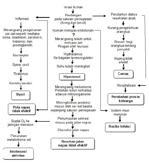 PatofisIologi Pada Gangguan Nutrisi Dan Askep Anak