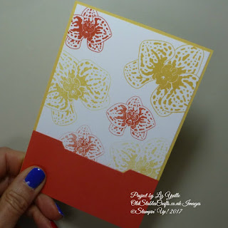 Climbing Orchid Gift Card Holder Item No.143723