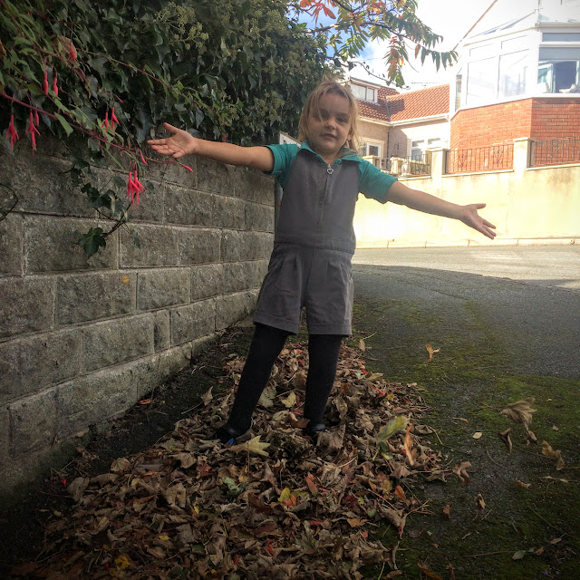 eaves, autumn leaves, throw leaves, fall leaves, fall, leaves on ground, play in leaves,  school runs, pembrokeshire, rural life, everyday, nature walk, pink flowers,