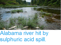 https://sciencythoughts.blogspot.com/2016/08/alabama-river-hit-by-sulphuric-acid.html