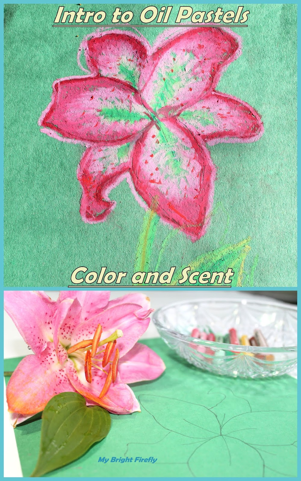 My Bright Firefly: Lily Coloring in Oil Pastels for Kids ...