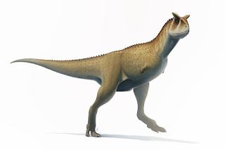 Carnotaurus Nedir?