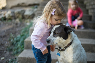 Teaching Kids And Pets To Co-Exist Peacefully