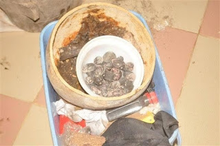 Photos: Civil Defense Arrests Pastor Who Buried Suspected Human Heads Right Inside His Church